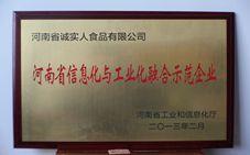河南信息与工业融合师范企业
